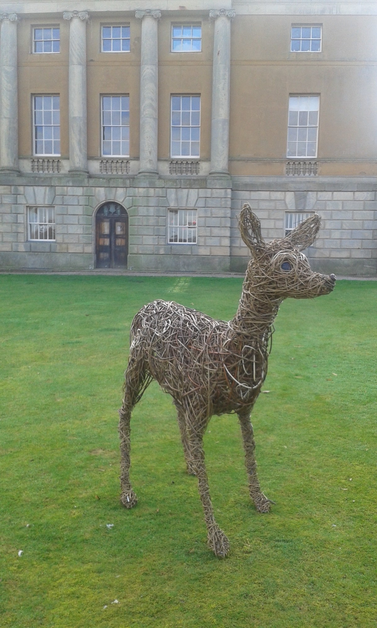 Willow Deer for Kedleston Hall